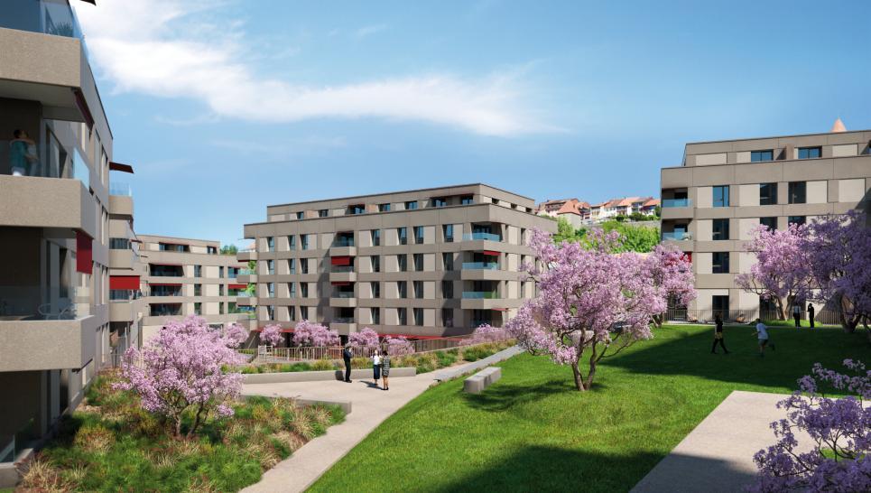 Appartement neuf en pré-commercialisation